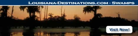 Louisiana cypress swamps ... visit and learn more!
