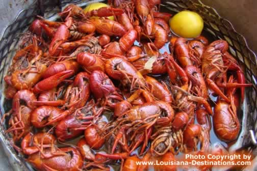 Atchafalaya Basin Crawfish ... boiled to perfection, seasoned just right.