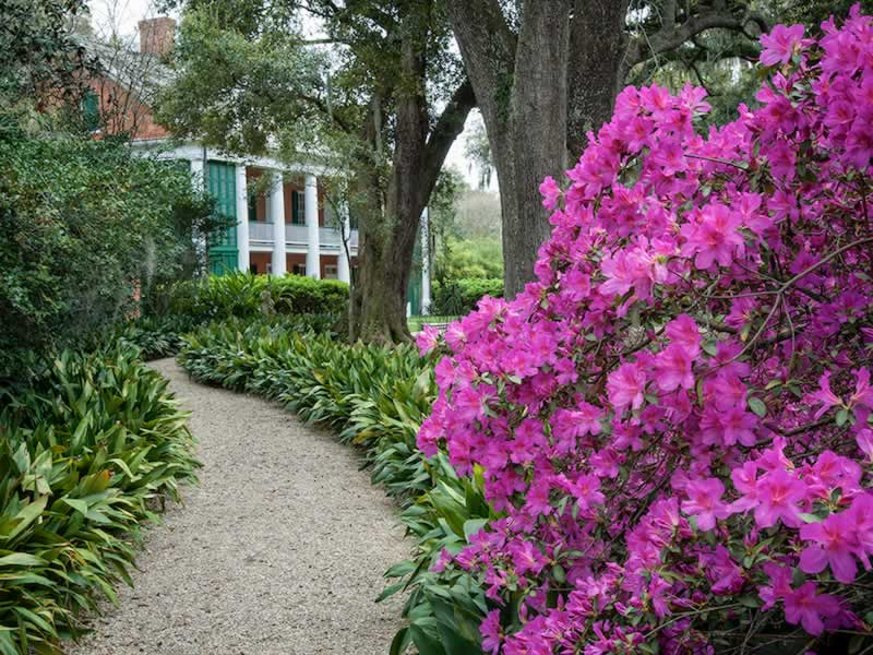 Shadows on the Teche plantation in New Iberia, Louisiana, with azaleas in bloom in the spring